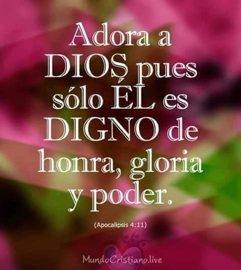 100 Imágenes Cristianas De Alabando A Dios Gloria A él Mensaje De Dios Palabra De Dios Biblia Frases De Alabanza