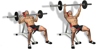 Incline Bench Press Technique | bodybuilding | Pinterest ...