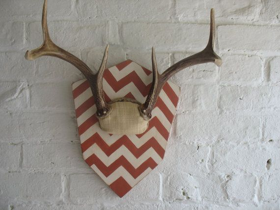 Reserved For Zach Vintage Deer Antlers Six Point