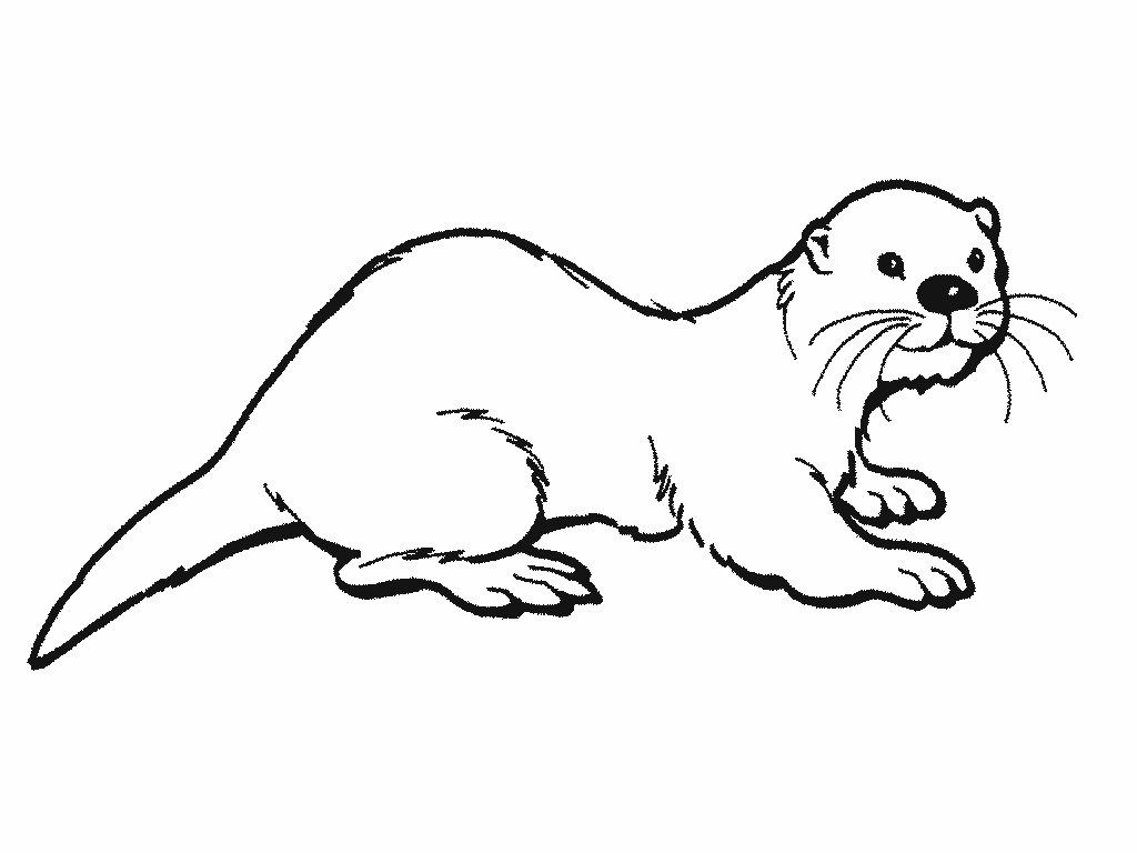 25 Great Image Of Otter Coloring Pages Davemelillo Com Coloring Pages Sea Otter Otters