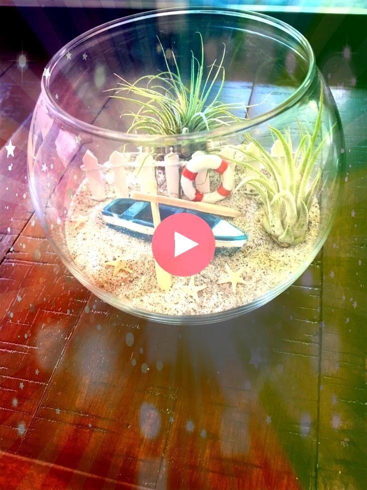 Terrarium Strandterrarium Glasterrarium DIY Terrarium Glasterrarium mit Air Pla Air Plant Terrarium Strandterrarium Glasterrarium DIY Terrarium Glasterrarium mit Air Plan...
