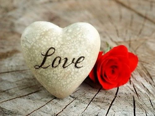Stone Heart Red Rose Cute Love Wallpapers Love Wallpaper