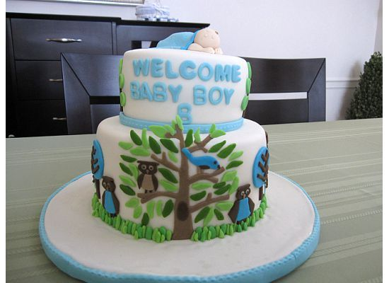 Baby Shower cake based off Owl Sky bedding from Dwell Studio