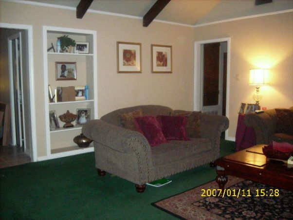 Green Carpet Living Room Ideas As Dark Brown