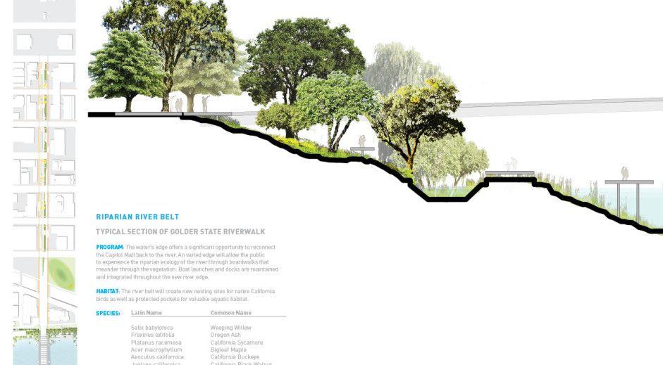 1 Atlas Lab Landscape Architecture Public Art 2 Cross Section Of Riparian Corridor With Bioswale Design Landscape Architecture Landscape Urban Landscape