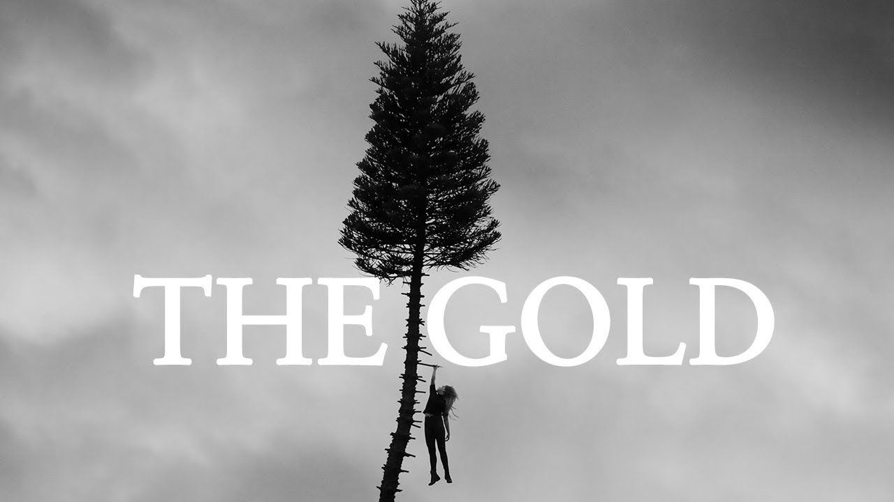 Manchester Orchestra The Gold Official Video From A Black Mile To The Surface Youtube Manchester Orchestra Orchestra Types Of Music