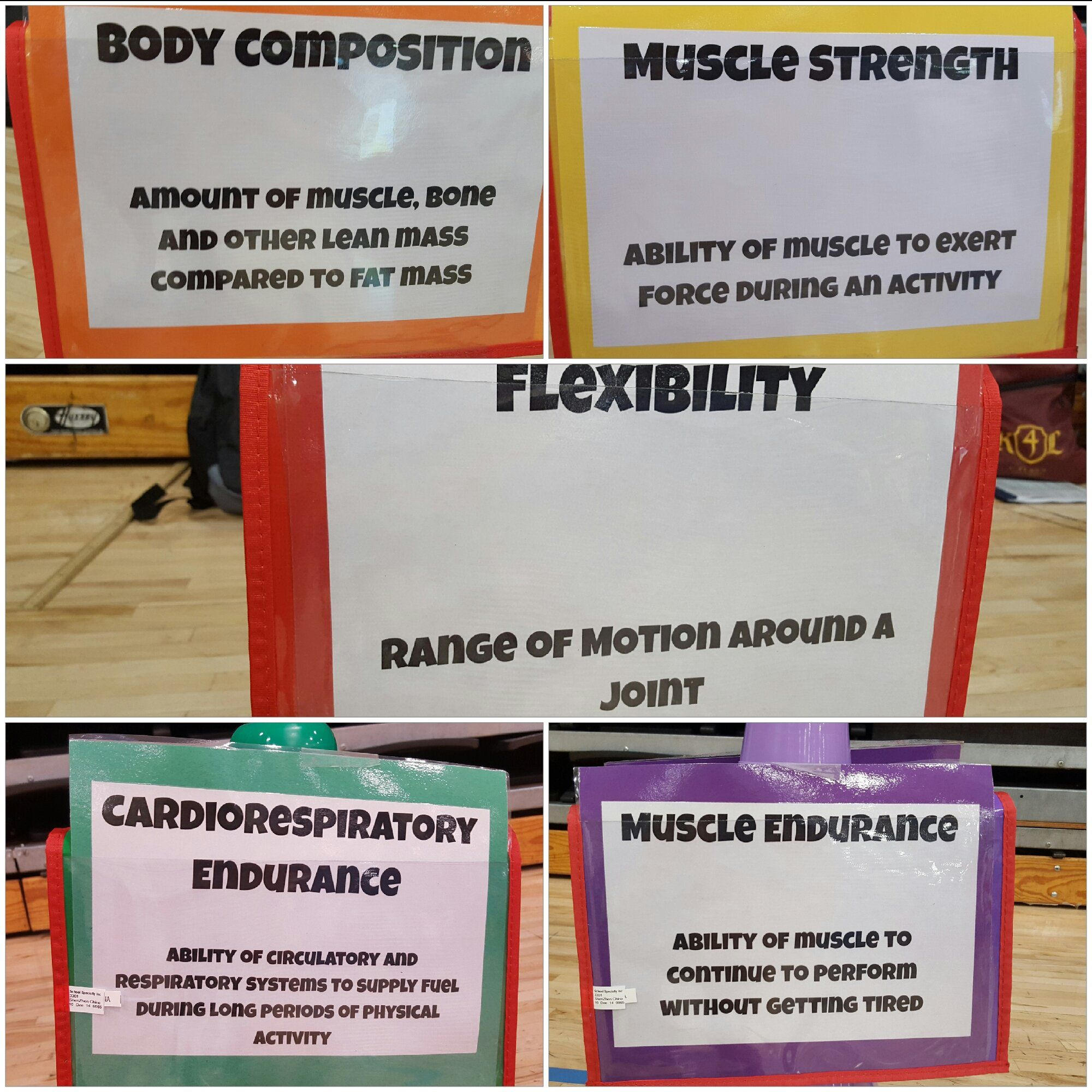 Nick on Respiratory system, Physical education, Body