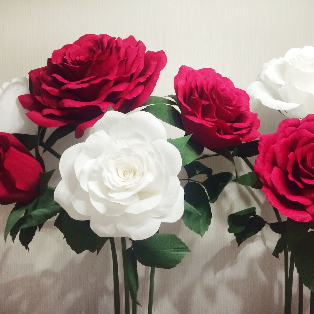 Букеты гигантских розы 🌹 для Алисы в стране чудес ...