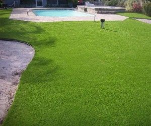 Turf Pro Grass Decorating Ideas Pinterest Grass Yard And Lawn