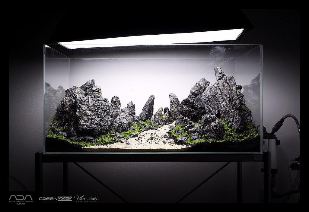 Amazing Bildergebnis Für Aquascape Iwagumi