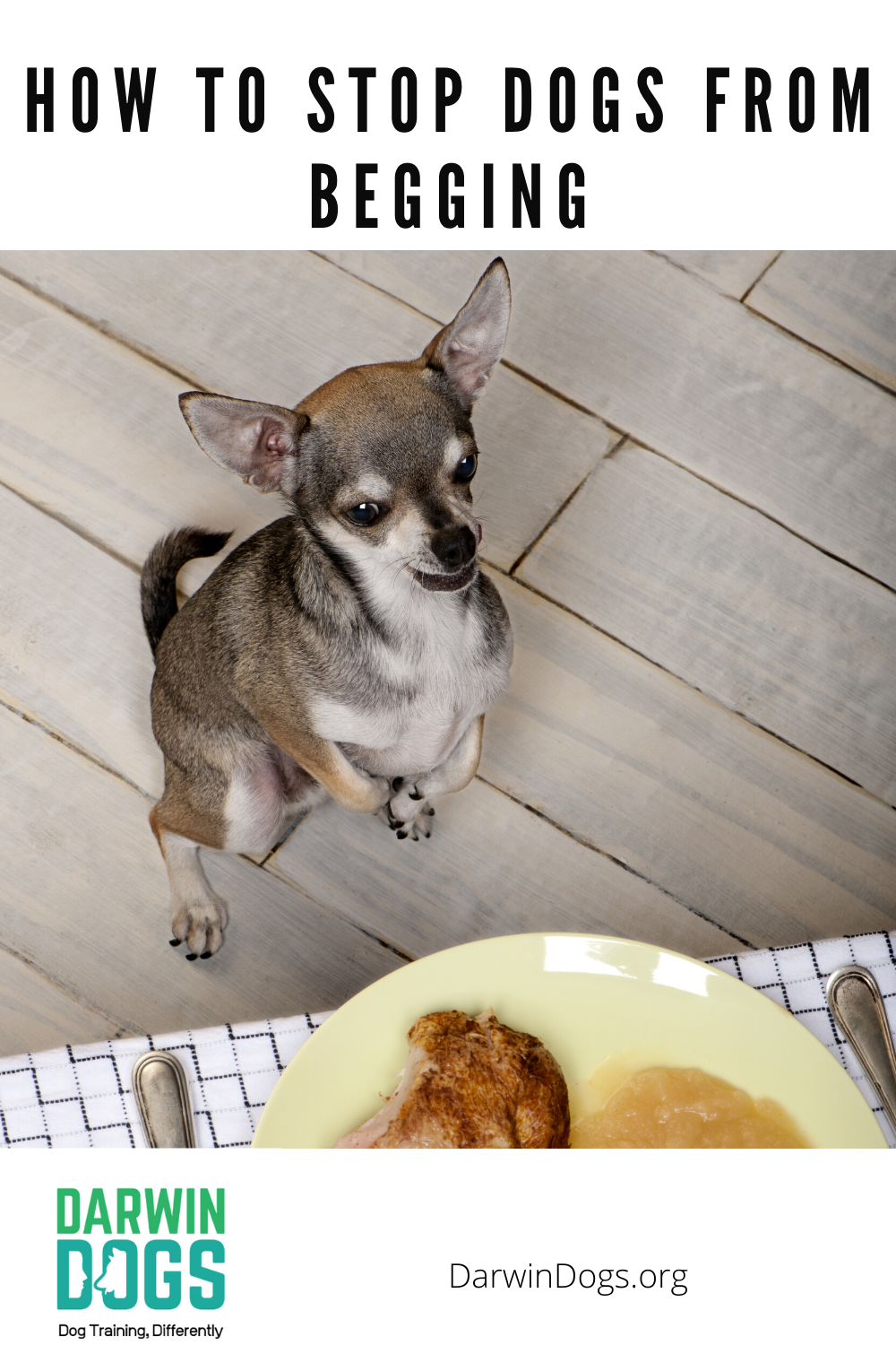 Want To Enjoy Your Meals Without Being Bullied By Your Dog Learn How To Eat In Peace Again And Teach Your Dog Not To Beg
