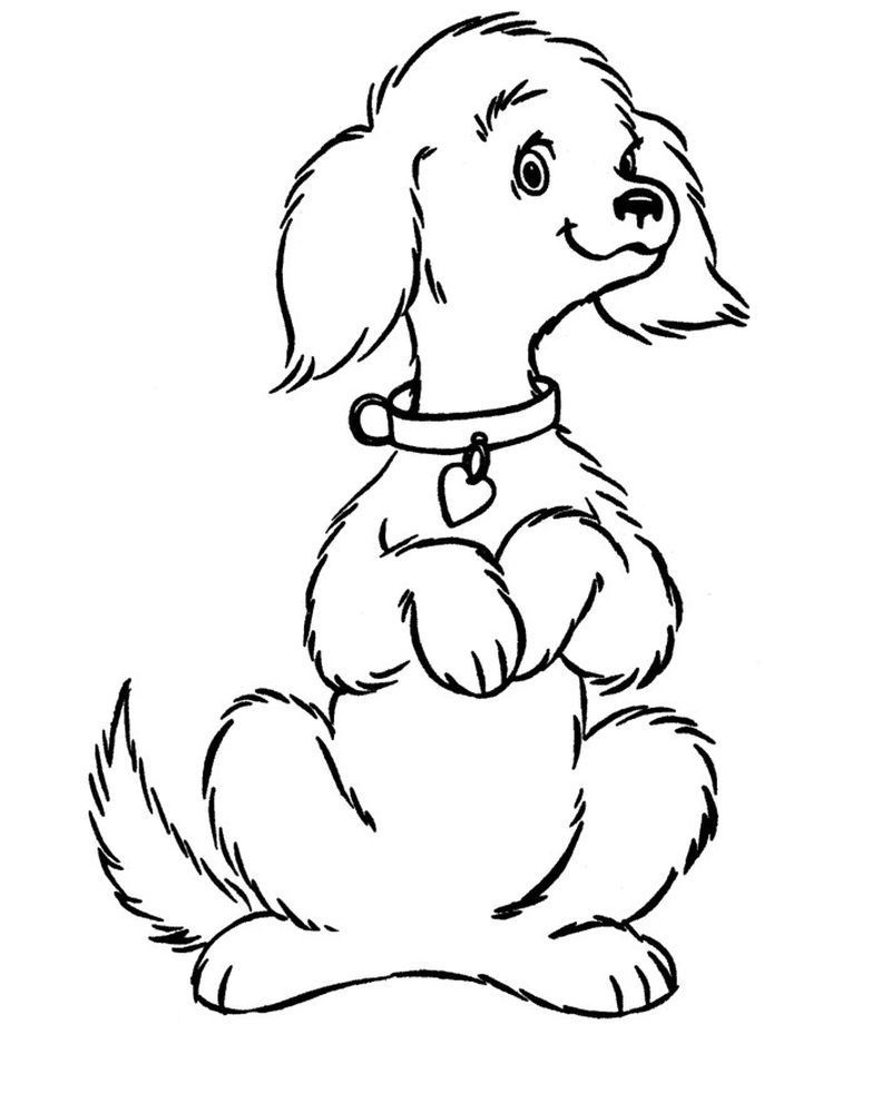 Cute Dogs Coloring Pages - Printable Dog Coloring Pages ...