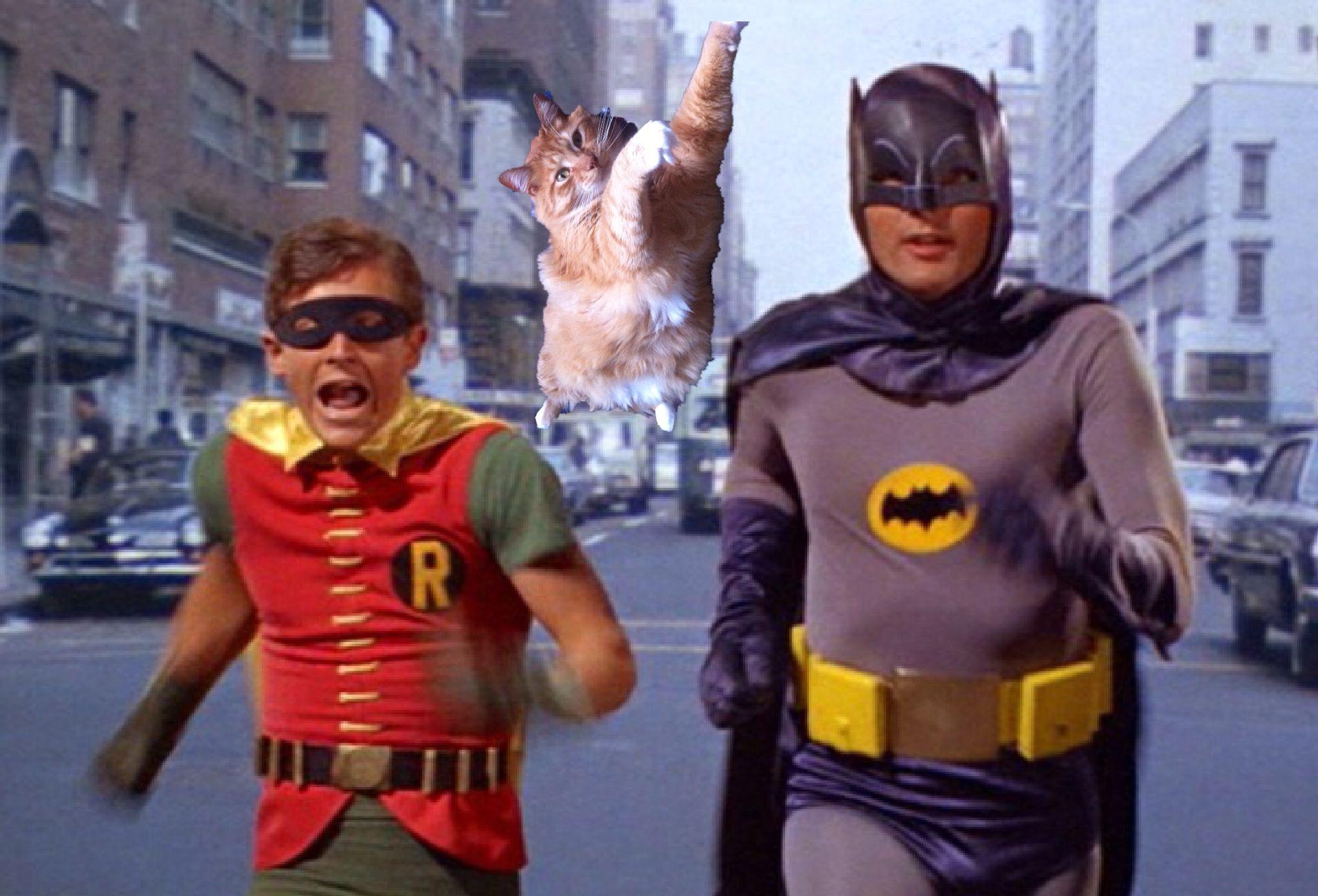 Run Batman Run With Images Adam West Batman Batman The Movie