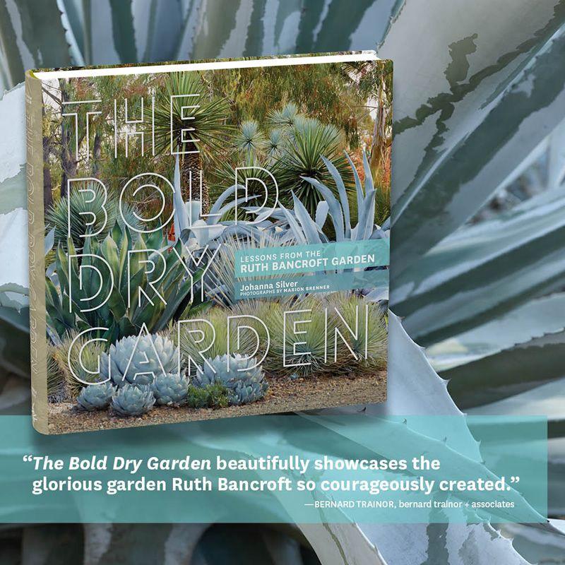 :: The Ruth Bancroft Garden ::