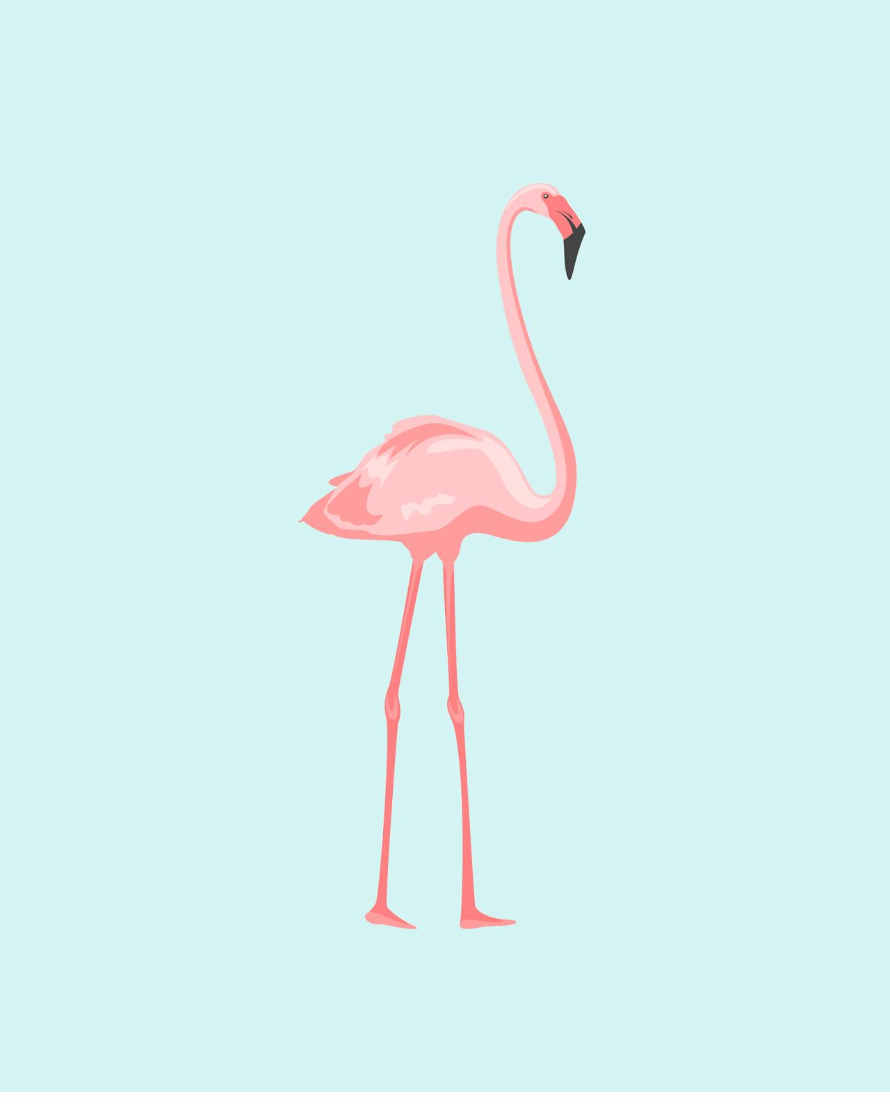 plano de fundo flamingo flores pinterest planos de