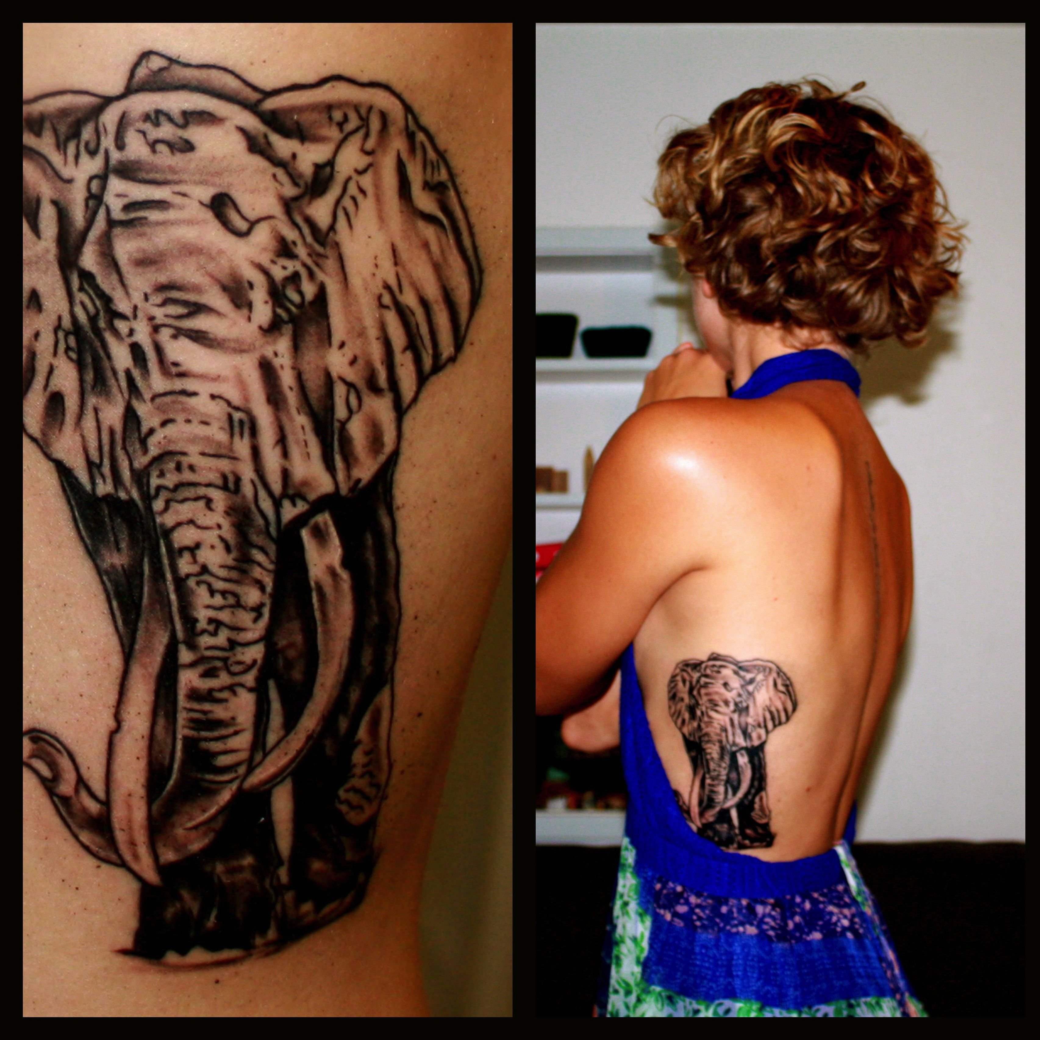 African elephant tattoo on side ribs back invokes for Strength tattoos on ribs