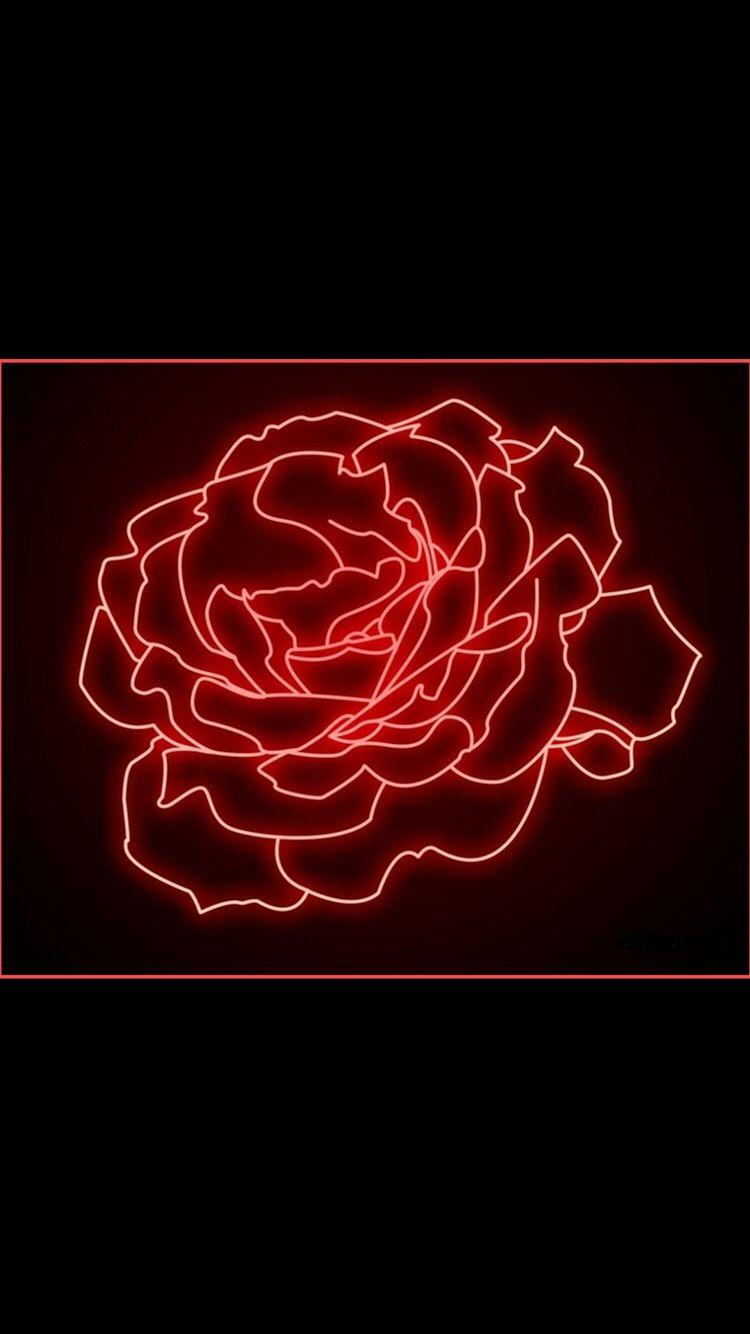 Neon Rose | Neon, Wallpaper, Neon wallpaper