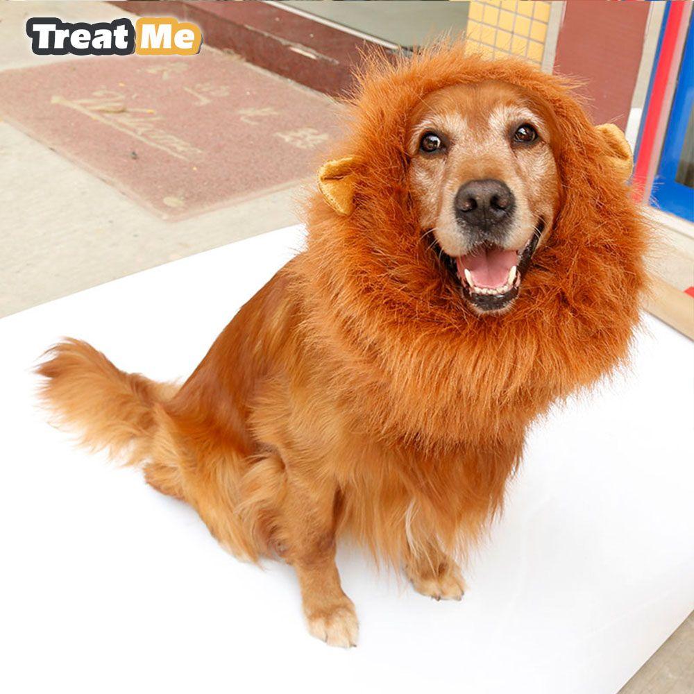 large dogs halloween pet apparel cat fancy dress up clothes lion mane wig mascota perro peluca