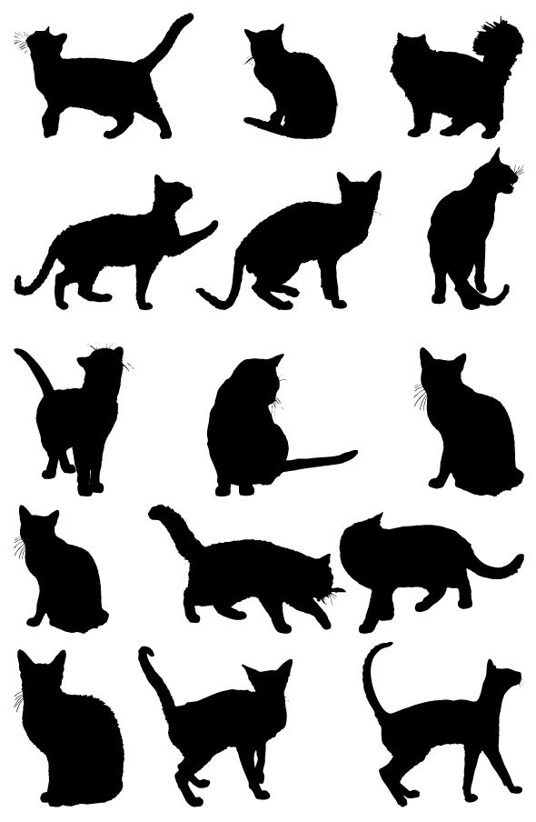 Download Free Cat Silhouettes Collection Vector | Cat silhouette ...