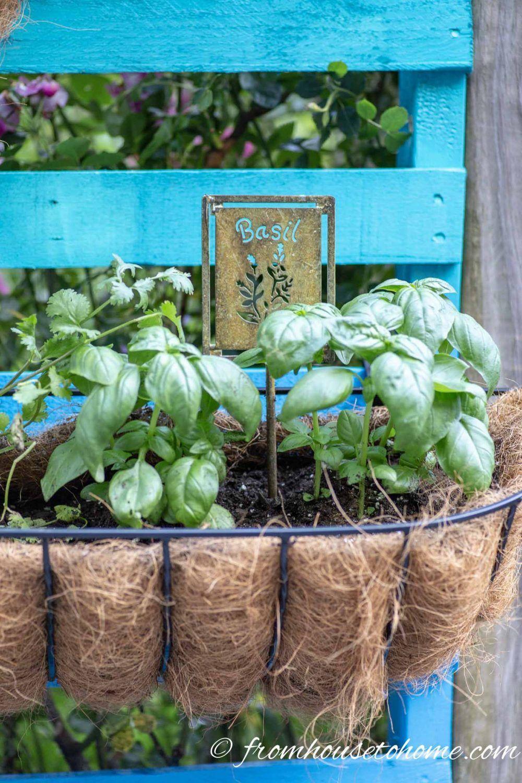Easy Diy Vertical Herb Garden Herb Garden Pallet Vertical Herb