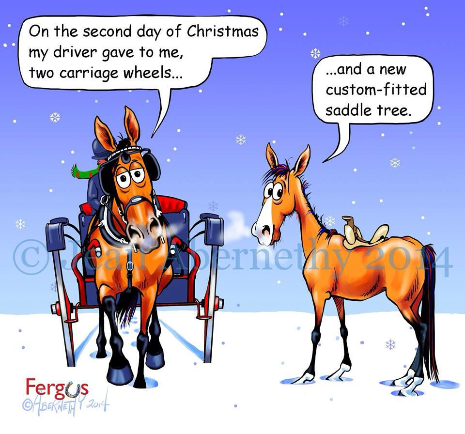 Christmas Horse Cartoon.Second Day Of Christmas A Stable Life Funny Horses