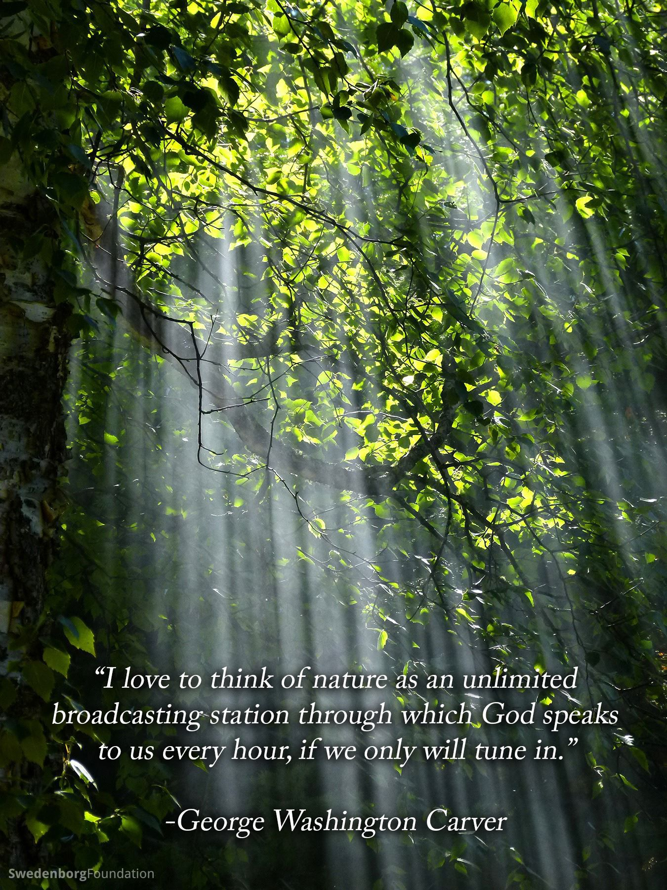 george washington carver quotes quote addicts teach me ldquoi love to think of nature as an unlimited broadcasting station through which god speaks