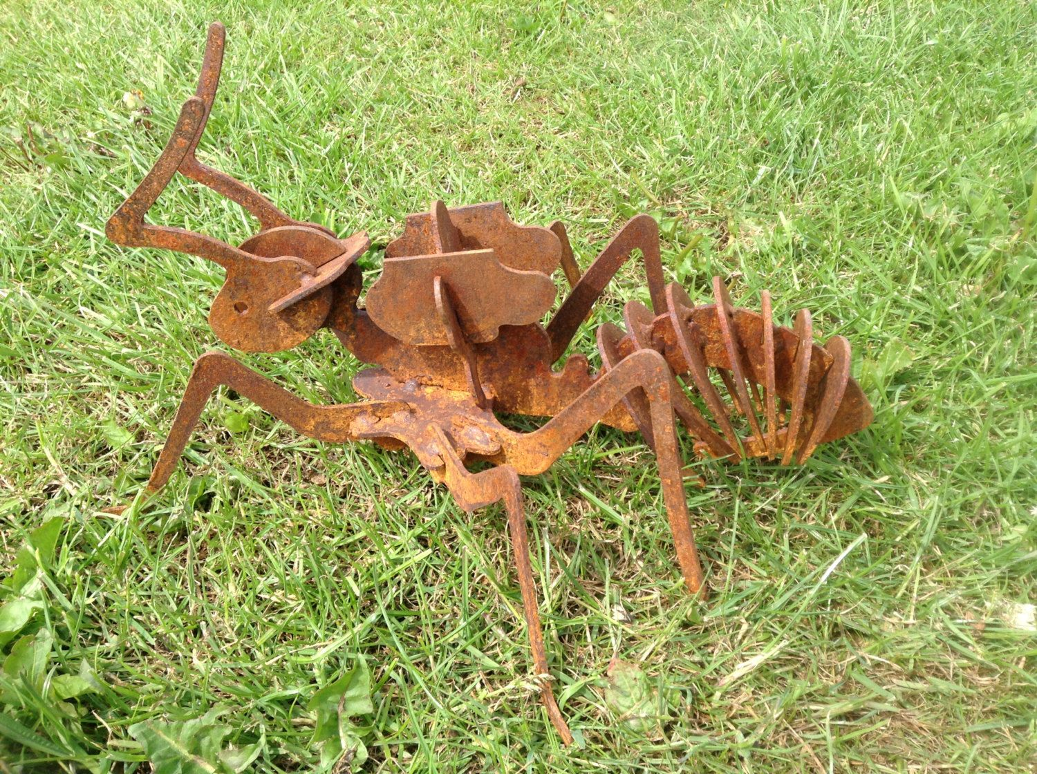 Rusty 3D ant / 3D Metal ant / ant gift / Rusty Metal ant / Garden ...