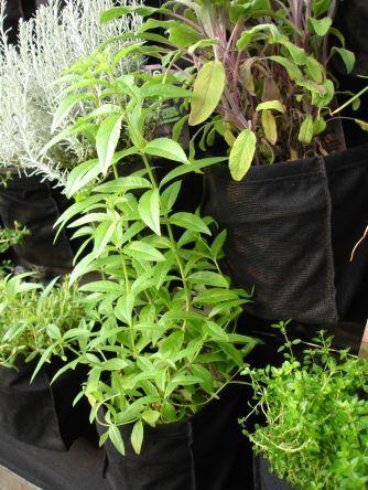jardiner facile en ville kits de jardinage int rieur sur balcon jardin vertical 9 poches. Black Bedroom Furniture Sets. Home Design Ideas