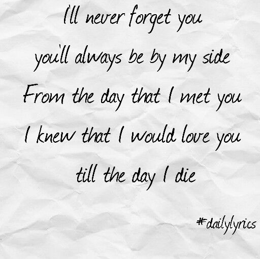 Never Forget You By Zara Larsson Mnek Song Lyrics Never Forget