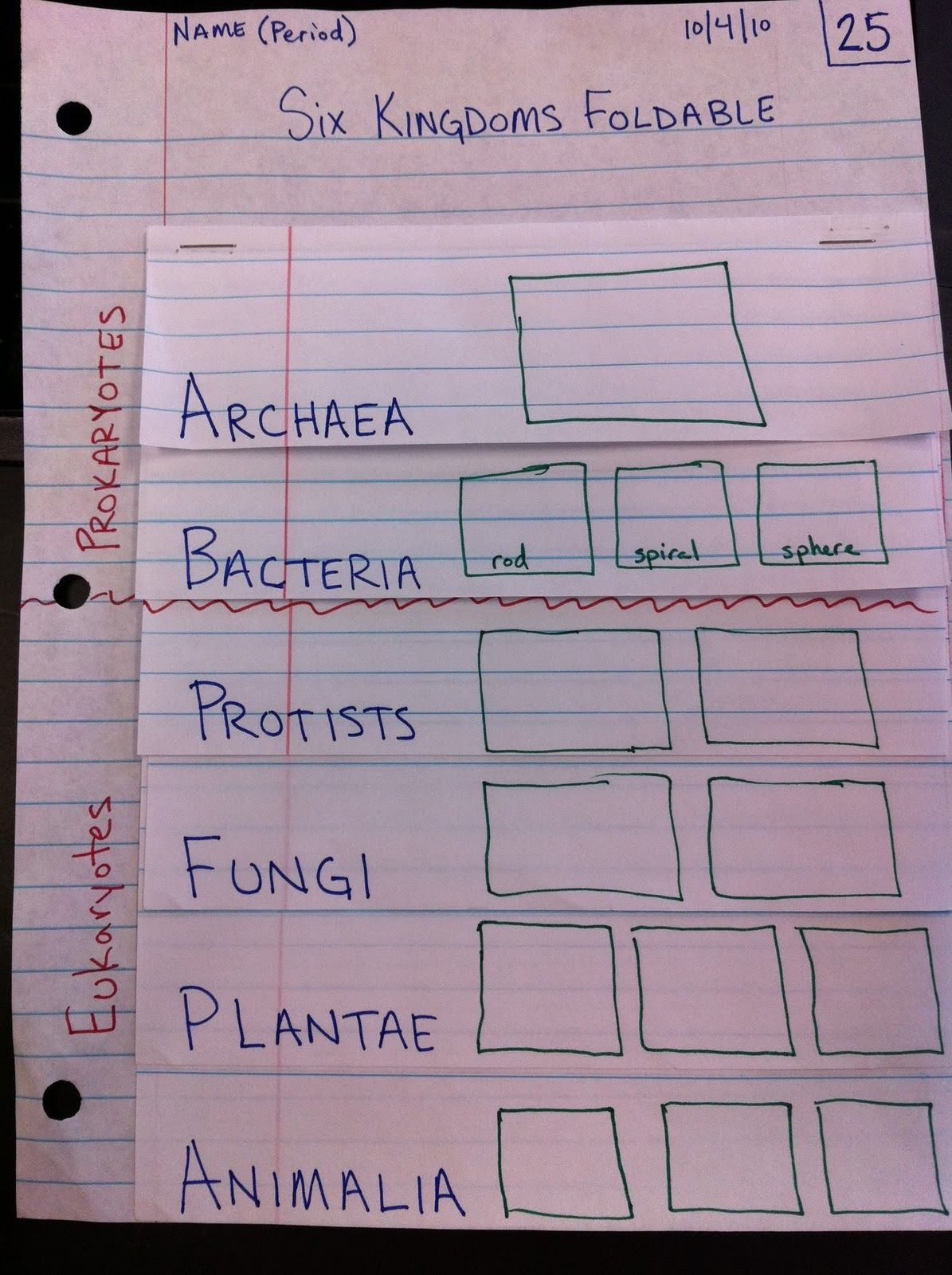garner 6th grade science blog six kingdoms foldable science sixth grade science science. Black Bedroom Furniture Sets. Home Design Ideas