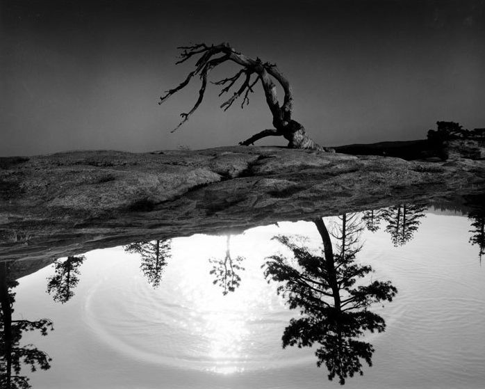 Jerry uelsmann pioneer of surreal photography my modern met