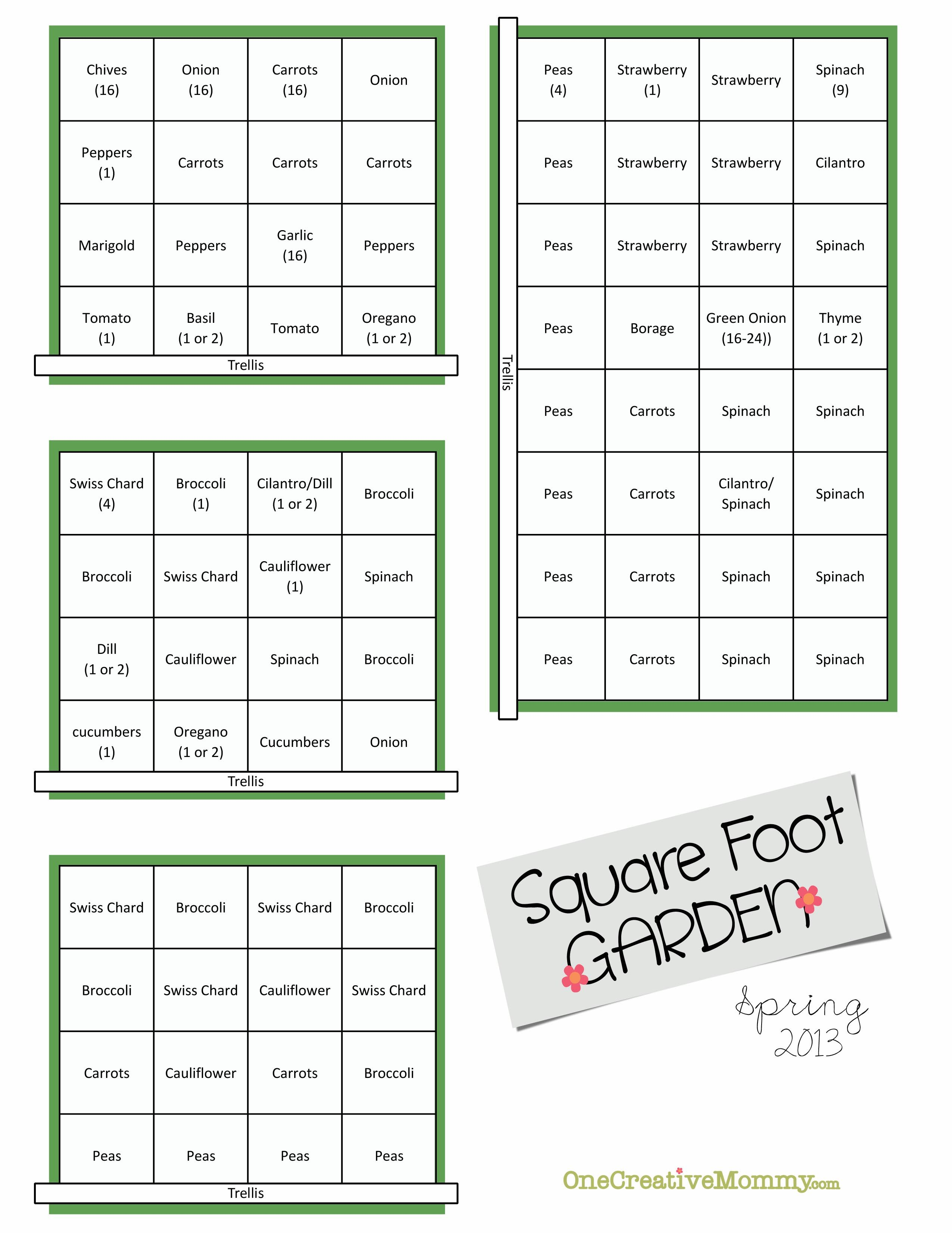 Square Foot Garden Layout Plan