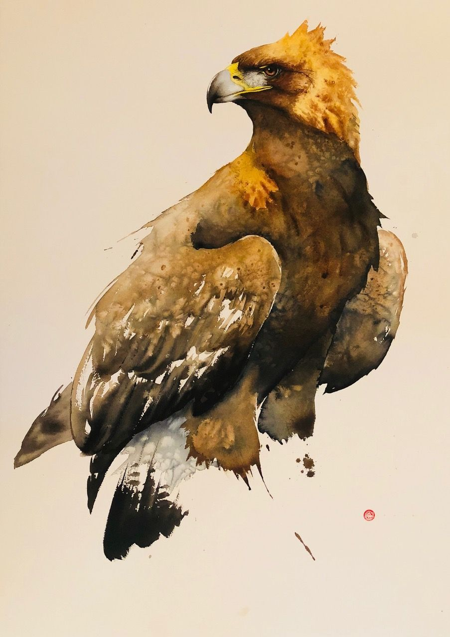 A feathery Friday from Karl Martens in bright London. View more works from the renowned artist via link in image.  _______ Karl Martens Golden Eagle (Hungerford Gallery) Signed Watercolour on Arches Watercolour Paper 41 3/8 x 29 1/2 in 105 x 75 cms (KaM173) #karlmartens #contemporaryart #artgallery #eagle