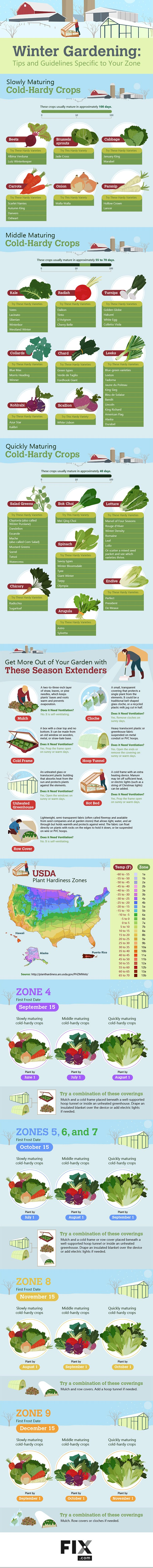 12 crops perfect for winter gardening gardening hacks winter