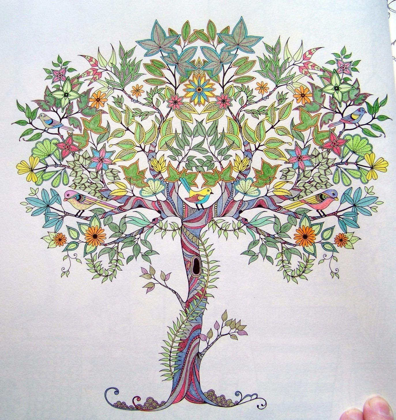Secret Garden An Inky Treasure Hunt And Coloring Book Johanna Basford 9781780671062 Amazon Books
