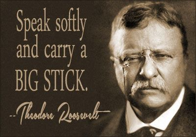 Image result for teddy roosevelt quotes