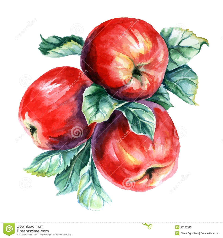 Watercolor Apple Vector Clip Art Stock Vector - Image ... (1300 x 1389 Pixel)