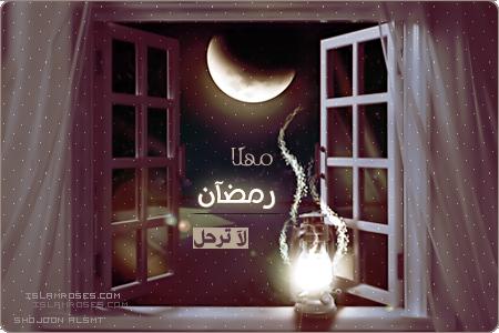 نتيجة بحث الصور عن مهلا رمضان صور متحركه Neon Signs Neon