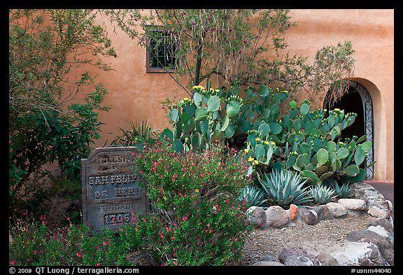 Desert plants and inscription Church San Felipe de Neri