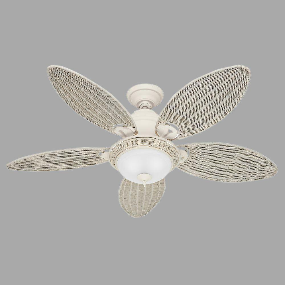 indoor tropical ceiling fans with lights rubbed bronze hunter caribbean breeze 54 in indoor textured white ceiling fan with light kit
