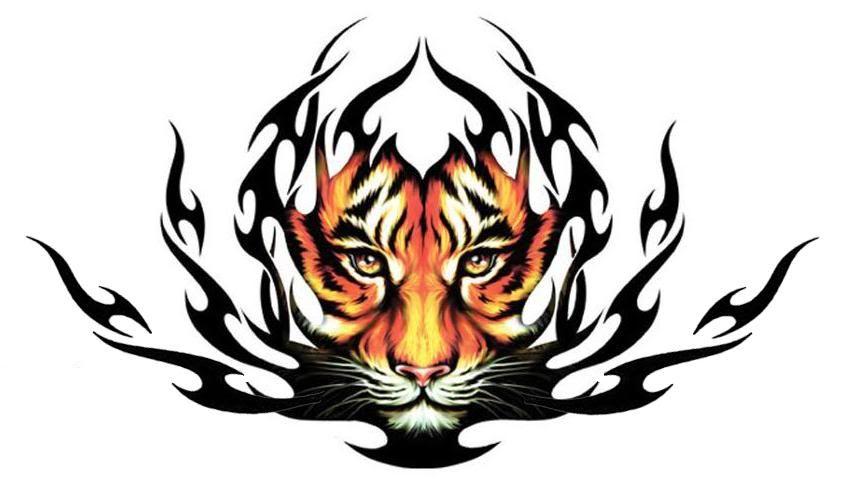 Designs Tribal Tiger Tattoos For Men Usmc Tattoos Designs Pictures Of Tribal Tiger Tattoo Tiger Tattoo Design Tribal Tiger