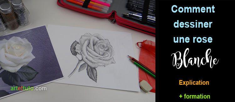 Comment dessiner une rose blanche