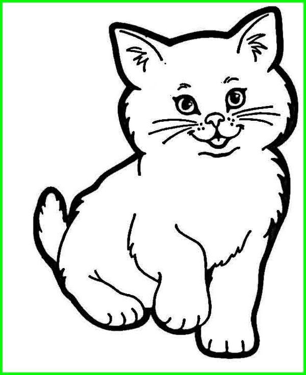 Gambar Kucing Untuk Diwarnai : gambar, kucing, untuk, diwarnai, Gambar, Lukisan, Kucing, Hitam, Putih, Hewan,, Halaman, Mewarnai,, Hewan