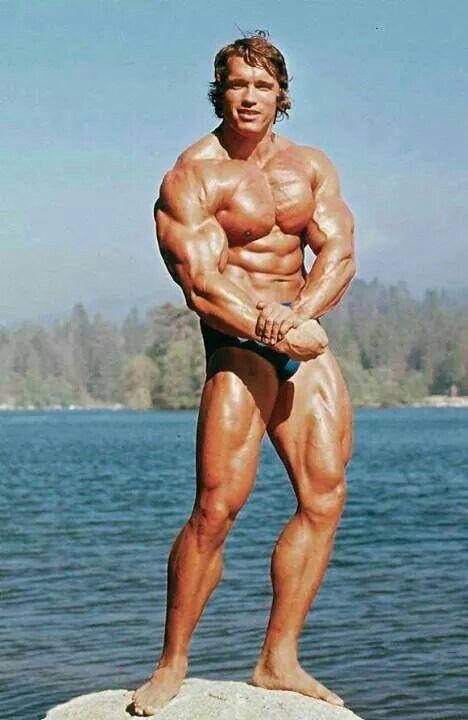 Ripped Arnold Schwarzenegger Pinterest Arnold schwarzenegger - new arnold blueprint app