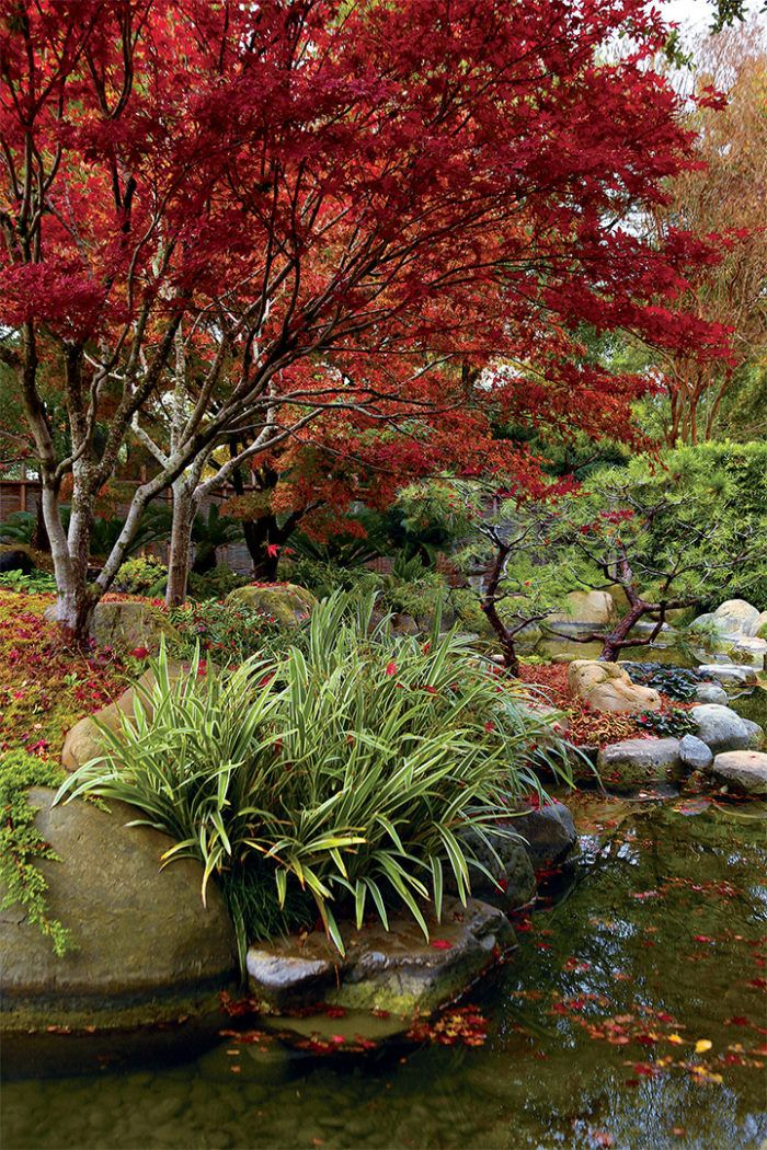 Elements of a Japanese Garden Japanese garden, Garden