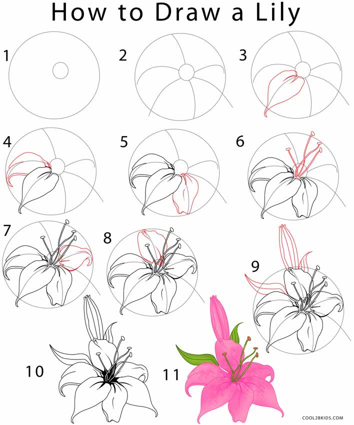 Flower Drawing Cool2bKids Dibujos de flores