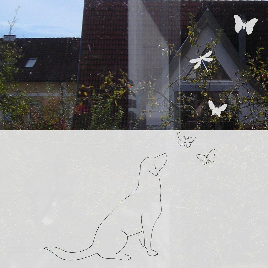 Fensterfolie Mit Motiv Hund Mit Schmetterlingen Folie Pinterest