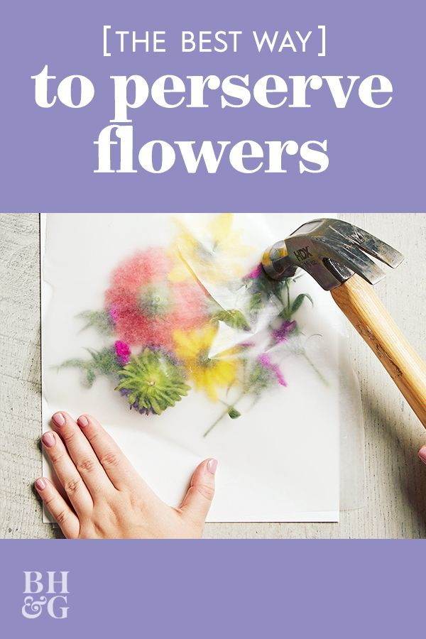 This simple flower pounding technique makes it easy to transform fresh flowers into a gorgeous art piece anyone will love. Grab a store-bought bouquet (or pick a few of her favorite flowers from the garden) and turn the flowers into pretty, handmade wall art. Our easy pounding technique makes it so easy to transfer the bright blooms onto watercolor paper. #poundedflowerart #flowercrafts #art #bhg