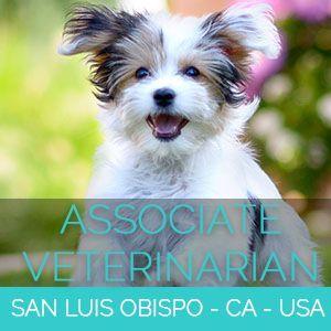 Associate Veterinarian Small Animal San Luis Obispo