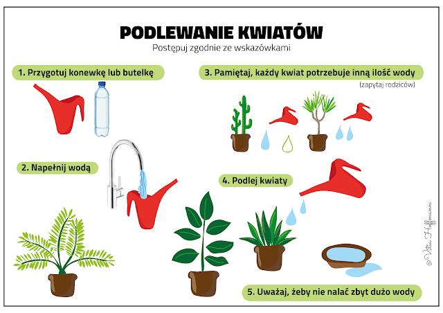 Aktywnispecjalni Pielegnacja Roslin Doniczkowych Instrukcja Obrazkowa Plants Herbs Mario Characters